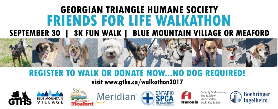 Friends for Life Walkathon 2017