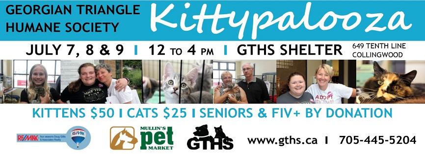 Kittypalooza Is Back