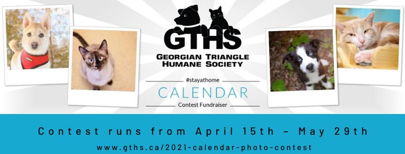 2021 Calendar Photo Contest Georgian Triangle Humane Society